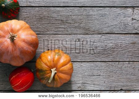 Fall background. Top view, pumpkins on weathered rustic gray wood with copy space.