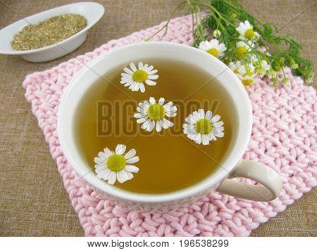 Fresh camomile tea in a tea cup