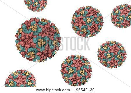 Eastern equine encephalitis virus isolated on white background, 3D illustration. An RNA Alphavirus from Togaviridae family transmitted by mosquiotes which causes encephalitis in animals and humans