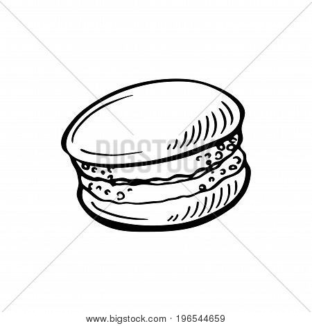 Hand drawn Sketch Cake macaron, macaroon isolated on white background.French pastry macarons