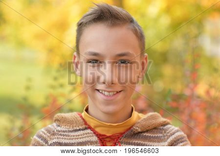 Portrait of smiling boy posing  in autumnal park