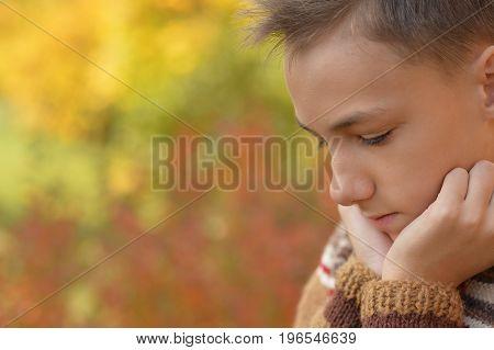 Portrait of boy thinking  in autumnal park