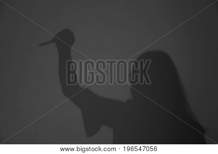 Blurred Shadow Of Woman Killer Holding Knife With Hatred In Murdurer / Horror / Thriller Concept
