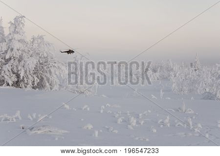 New Urengoy, YaNAO, North of Russia. Helicopter UTair and Konvers avia  in the local airport on the service. January 06, 2017 Editorial