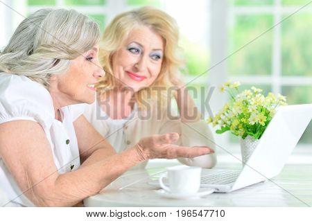 Close up portrait of mature woman using laptop