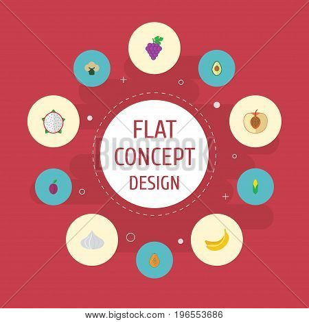 Flat Icons Maize, Apricot, Cluster And Other Vector Elements