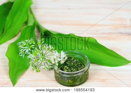 Homemade pesto in a jar with wild garlic flower and leaves. Made from wild garlic olive oil parmesan cheese and nuts.