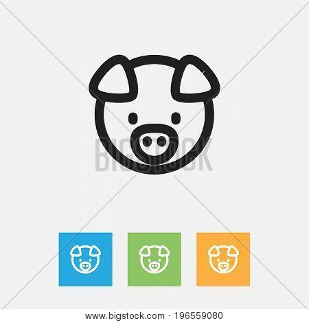 Vector Illustration Of Animal Symbol On Piglet Outline