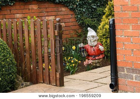 Traditional Garden Gnome Dwarf In An English Country Home Uk