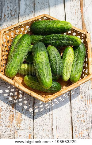 Cucumber basket on the white wooden background