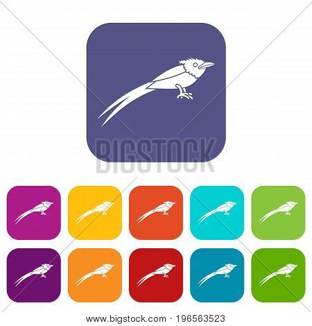 Asian paradise flycatcher icons set vector illustration in flat style in colors red, blue, green, and other