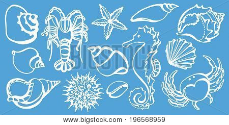 Set of crab sea horse cancer seashell sea urchin starfish. Sketch style vector. Marine collection. Silhouette shapes. Doodle