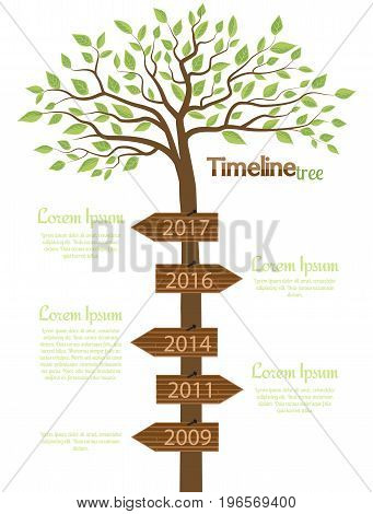 Vector illustration of tree with leaf. Timeline shaped tree with space for your text