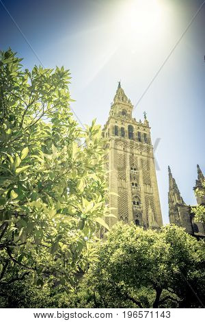 Sunshine Over The Giralda Bell Tower Of The Cathedral In Seville, Spain, Europe
