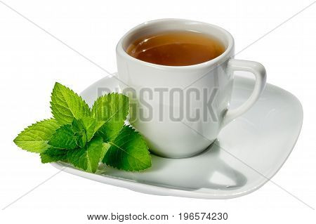 white tea cup and sauser with hot tea and mint leaves isolated on white background