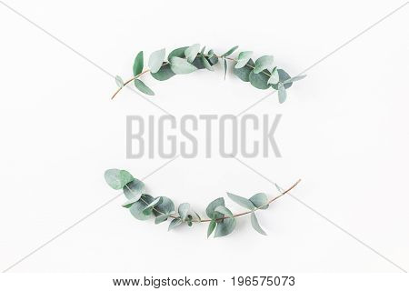 Eucalyptus on white background. Wreath made of eucalyptus branches. Flat lay top view copy space