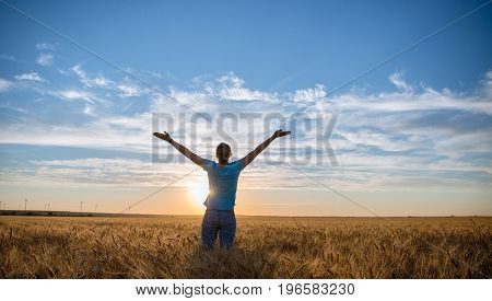 Free Happy Woman Enjoying Nature and Freedom. Woman with arms outstretched in a wheat field in sunset.