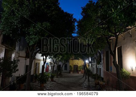 The streets of Seville at night in Seville Spain Europe