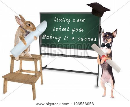 Cute bunny write on board starting a new school year