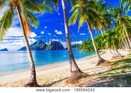 Relaxing tropical scenery with beautiful palm beach