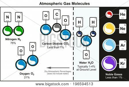 Atmospheric Gas Molecules infographic diagram including nitrogen oxygen carbon dioxide water and common noble gases which forming our air for chemistry and environment science education