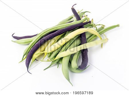 bunch of harvested bean Purple green and yellow Wax Snap Beans