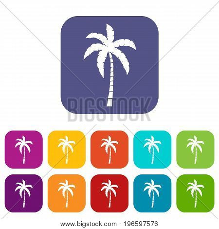 Palm tree icons set vector illustration in flat style in colors red, blue, green, and other