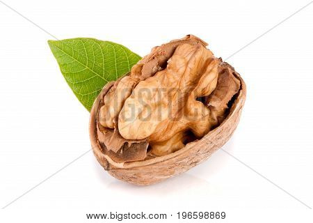 Walnut with leaf isolated on white background.