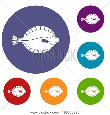 Flounder icons set in flat circle red, blue and green color for web
