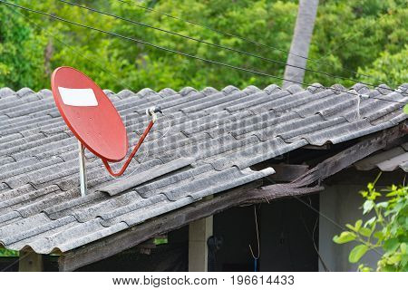 Satellite dish on the roof with plant background.