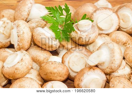 Pile of the whole uncooked edible mushrooms with twig of the parsley on a wooden surface