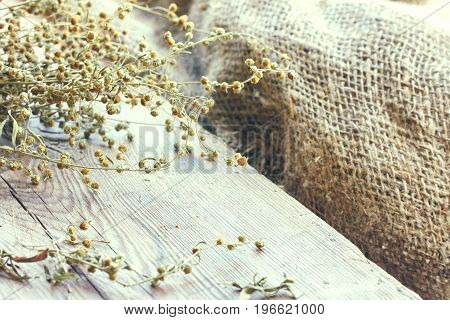 bunch of dry herb wormwood on wooden table near the window burlap rustic style