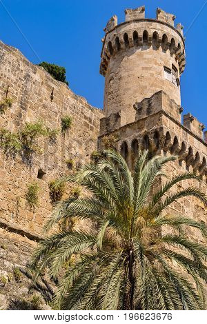 fragment of ancient stone fortress with a tower and one big palm tree