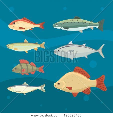 Isolated river fish. Set of freshwater sea cartoon fishes. Fauna ocean vector illustration.