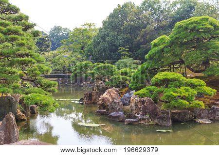 Ninomaru garden a traditional Japanese Zen garden in summer season with Bonsai trees stones pond and rock bridge. at Nijo Castle (Nijojo) famous historic site and tourist destination in Kyoto Japan.