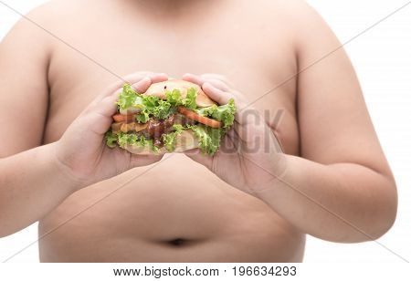 Pork Hamburger In Obese Fat Boy Hand Isolated.