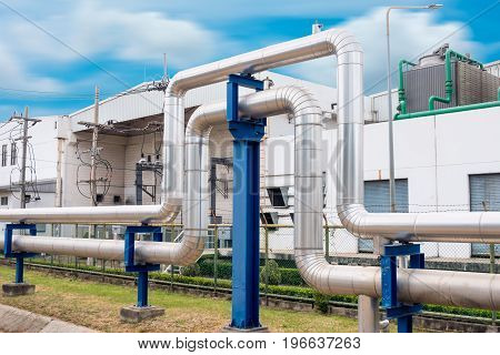 Steam insulation and loop pipeline Steam pipe supply