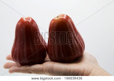 Java apple from damnoen-saduak good taste