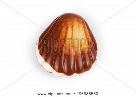 chocolate seashells on white background Present, Closeup, Romance, Brown, Food, Diet, Tasty,