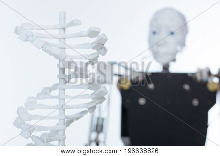 Comparing the origin. White experimental model of the human genome standing in front of the newest robot