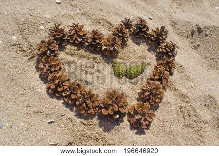 Heart Of Cones On The Sand