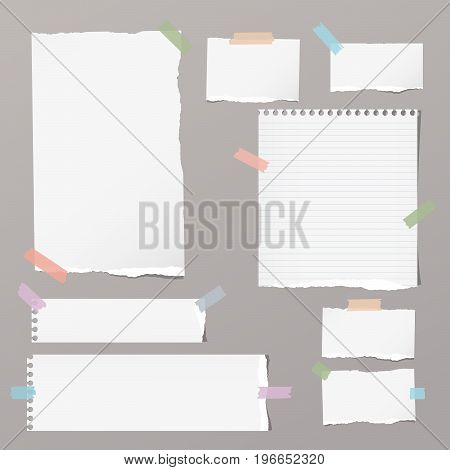 Ripped blank, ruled note, notebook, copybook paper sheets stuck with colorful sticky tape on grey background