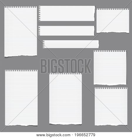 Ripped ruled note, notebook, copybook vertical and horizontal paper strips, sheets grey background