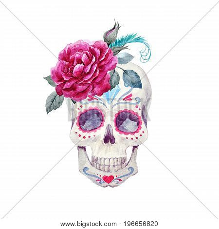 Beautiful watercolor hand drawn skull with flowers