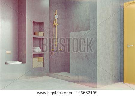 Gray Bathroom With A Shower, Closet Toned