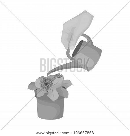 Watering the houseplant in a pot. Home Flower single icon in monochrome style vector symbol stock illustration .
