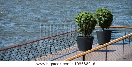 Two topiary ornamental plants in the large pots, on the terrace over the water