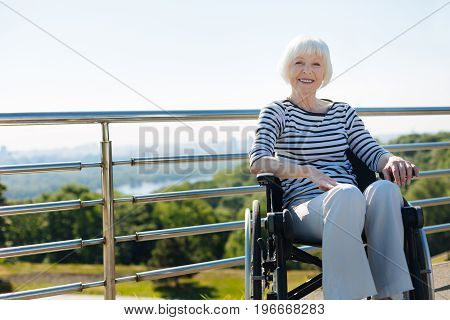 Lifelong optimist. Energetic vibrant elderly woman taking daily walks in the park and looking enthusiastic while sitting in a wheelchair