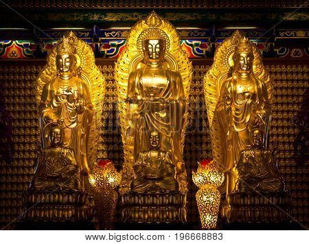 many image of buddha on wall in chinese temple Thailand