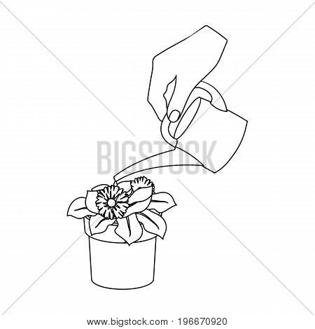 Watering the houseplant in a pot. Home Flower single icon in outline style vector symbol stock illustration .